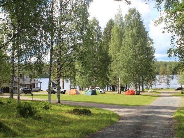 Koli-Freetime-camping-alue-leirintäalue-Kolilla