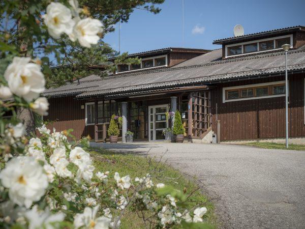 lomakeskushuhmari-polvijärvi-summer