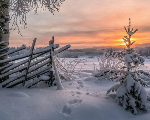 https://www.visitkarelia.fi/files/vk-asko-kuittinen-fence-jpg.jpg