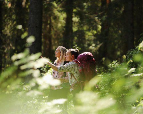https://www.visitkarelia.fi/files/vk-harri-tarvainen-foresttrip2-jpg-1.jpg