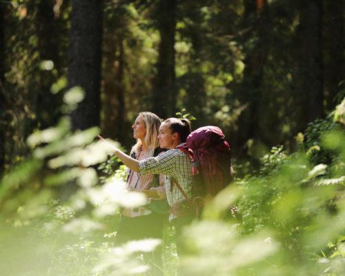 https://www.visitkarelia.fi/files/vk-harri-tarvainen-foresttrip2-jpg.jpg