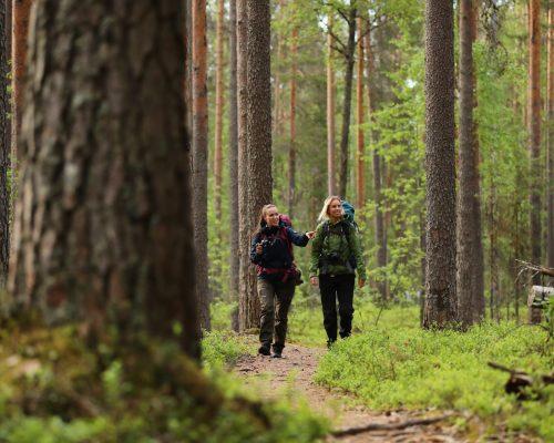 https://www.visitkarelia.fi/files/vk-harri-tarvainen-hikers2-jpg.jpg