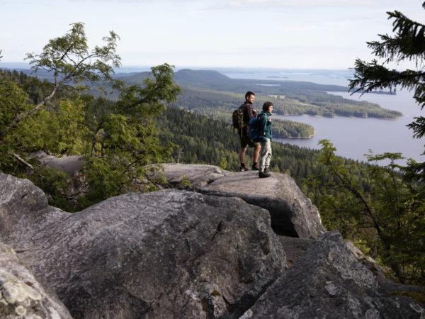 vk-vaeltajat-retkeilijät-Kolin-kansallispuistossa-kesällä-Lieksassa