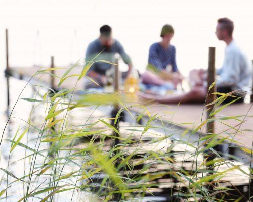 https://www.visitkarelia.fi/files/vk-harri-tarvainen-reeds-jpg.jpg