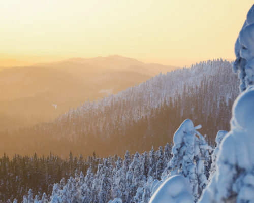 https://www.visitkarelia.fi/files/vk-harri-tarvainen-wintertrip7-jpg-e1598358577104.jpg