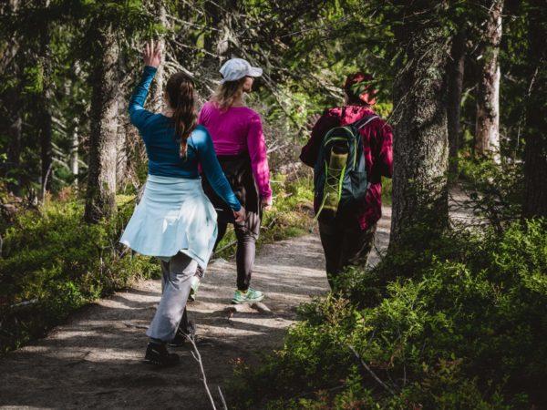 vk-Feel-Koli-retket-Kolin-kansallispuistossa