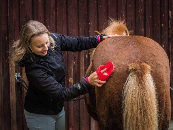 VK-Horses-Riding-Kuivalantila